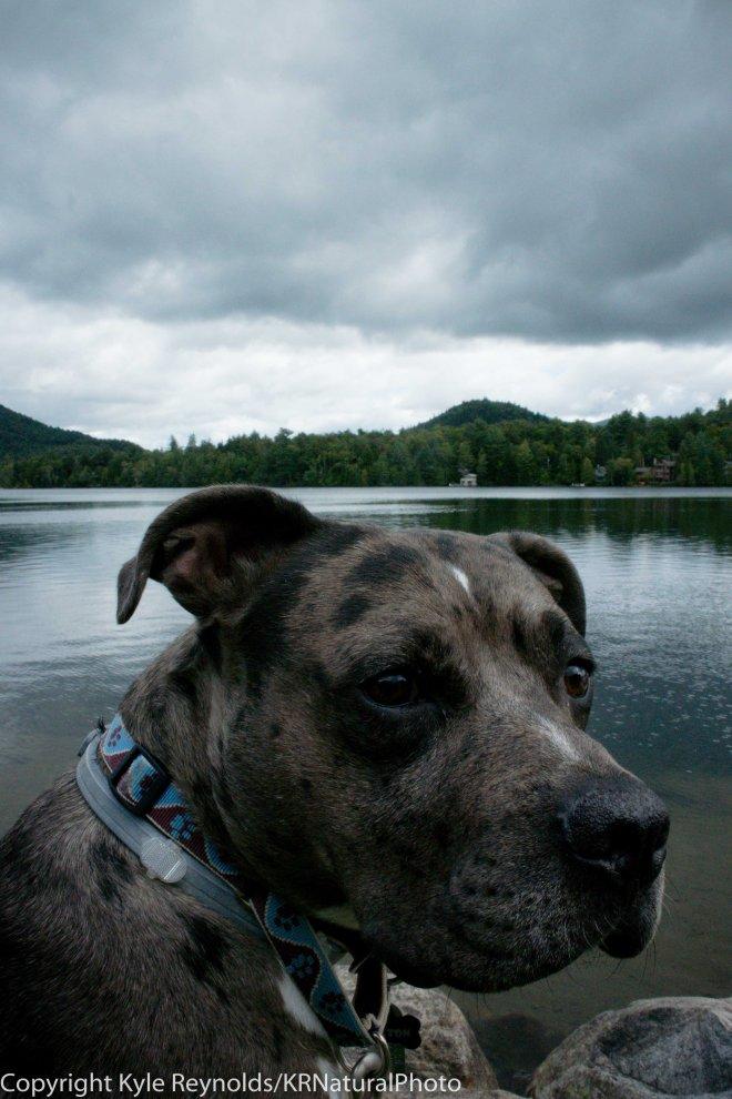 Paxton visits Lake Placid
