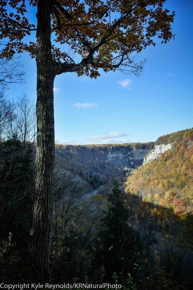 Letchworth State Park_October 25, 2015_410-2