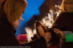 Sparkle Christmas_December 05, 2015_115