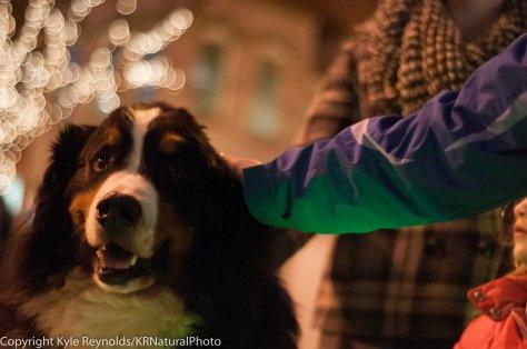 Sparkle Christmas_December 05, 2015_132