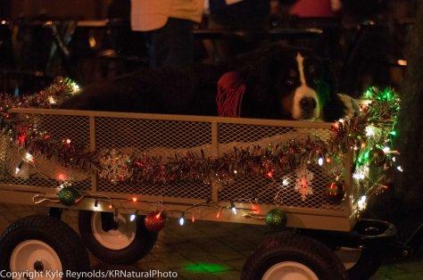 Sparkle Christmas_December 05, 2015_181
