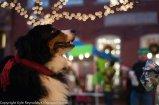 Sparkle Christmas_December 05, 2015_65