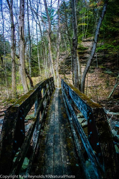 Finger Lakes Trail_April 27, 2017_21-2
