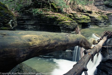 Buttermilk Falls State Park_April 25, 2017_79