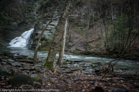 Robert Treman State Park_April 25, 2017_93