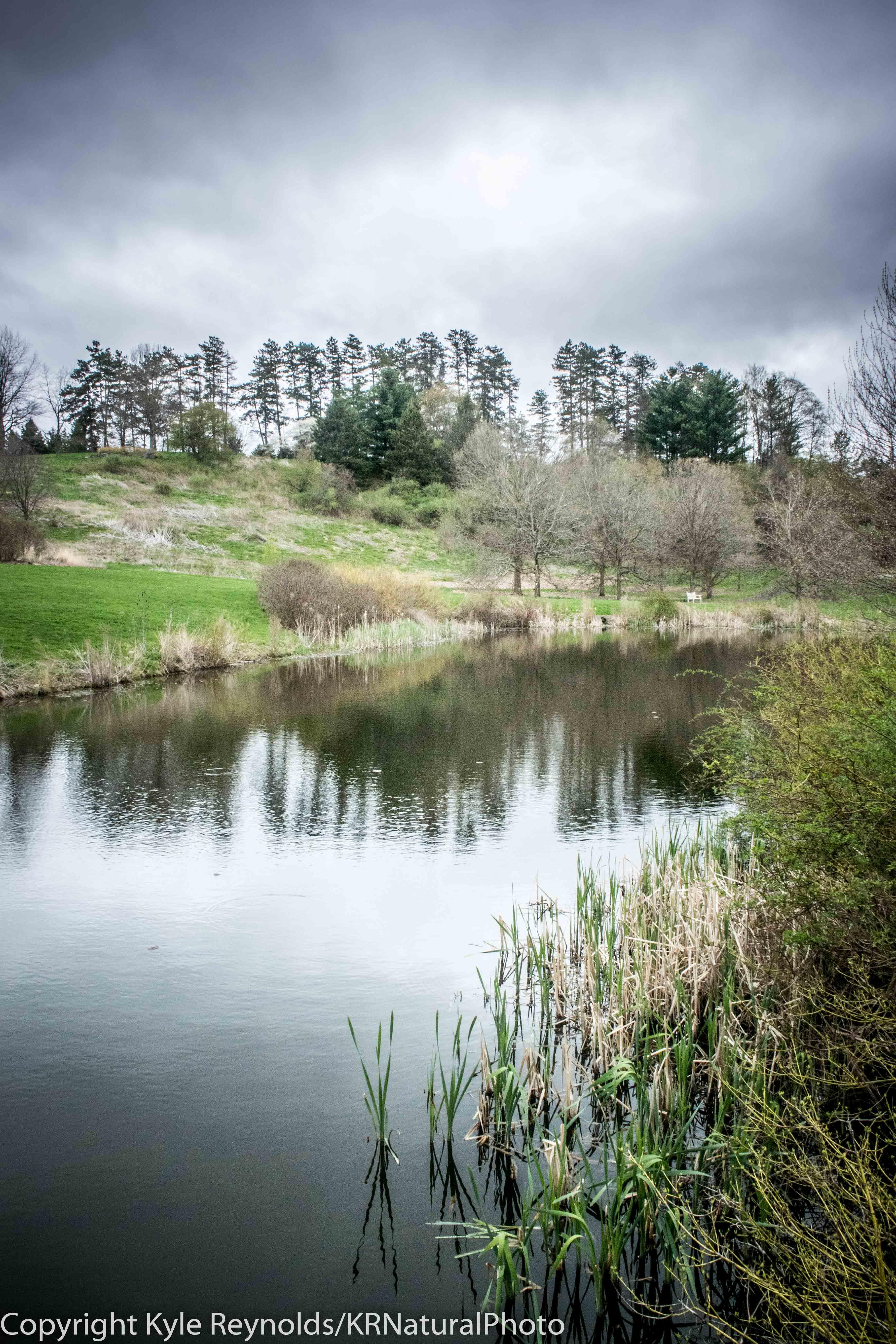 Cornell Plantations_April 25, 2017_22