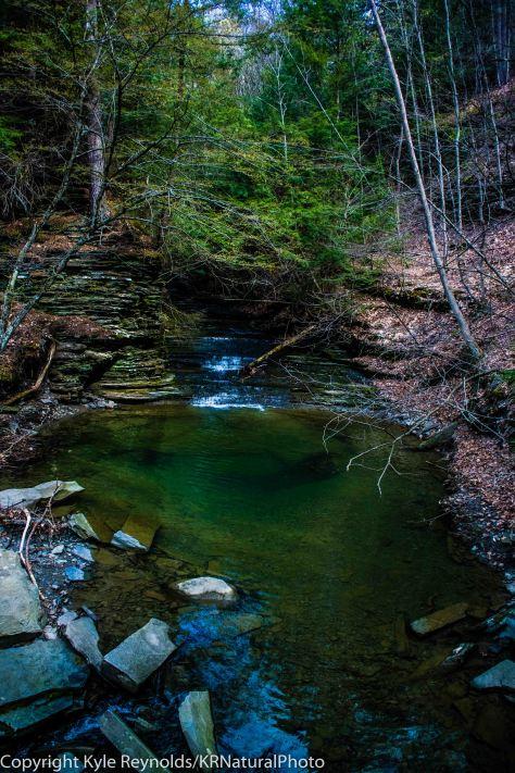 Finger Lakes Trail_April 27, 2017_16