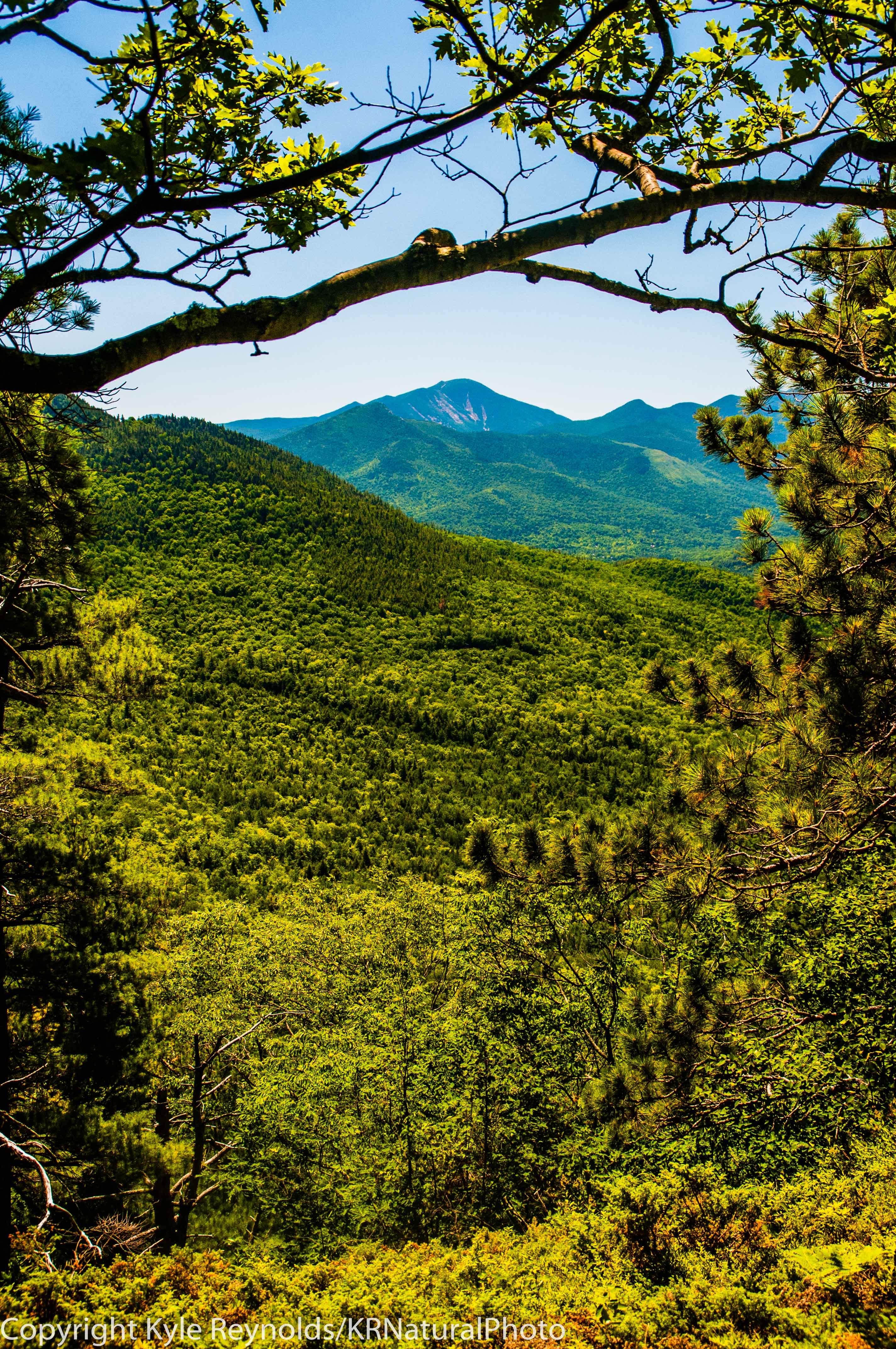 Baxter Mountain_July 20, 2018_7